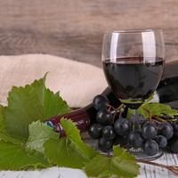 Egy igazán őszi fogás: vörösborban párolt felsál bormártással