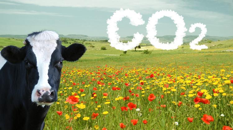 A megnövekedett fogyasztói igények hatással vannak a klímaváltozásra