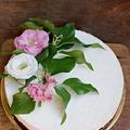 Bounty torta - mindenmentesen (laktóz-, glutén-, cukormentes)