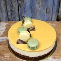 Citromos, fehér csokis mousse torta mákos piskótával
