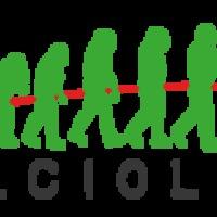Calciolíra: A