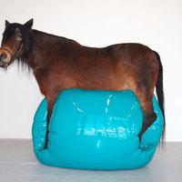 A nap indokolatlan műtárgya: lufigoló ló