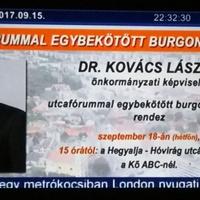 Itt a magyar politika új csodafegyvere: a burgonyavásár!