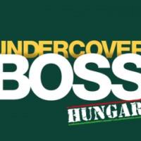 Beépített főnök - Magyarország