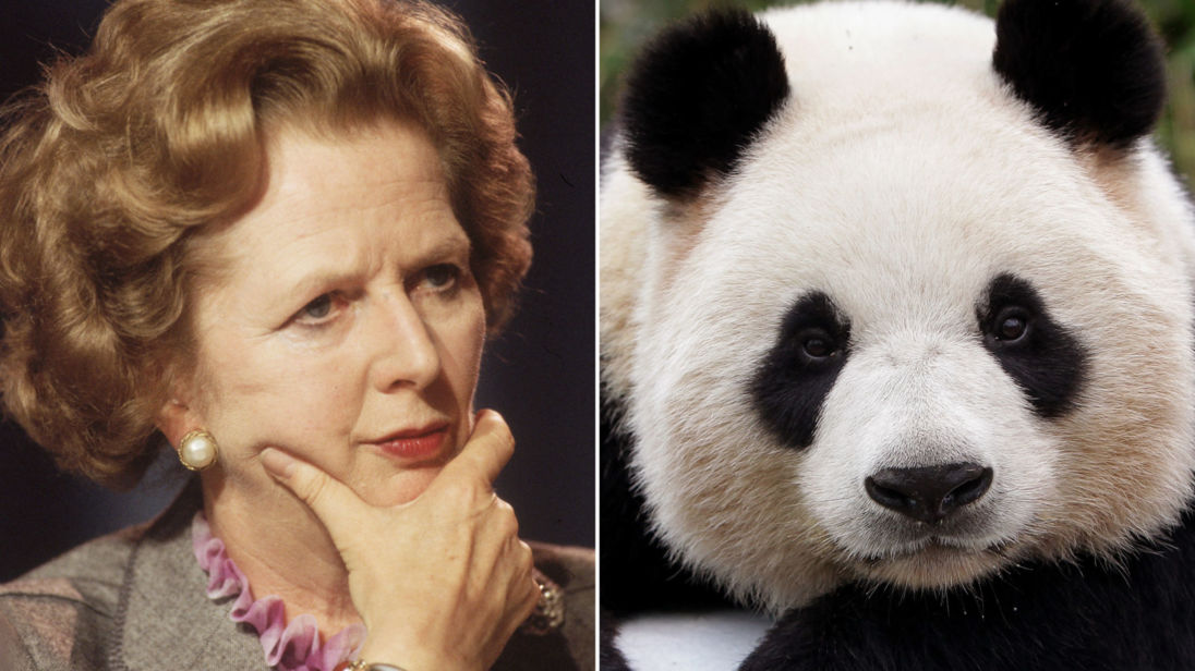 skynews-panda-thatcher_4193883.jpg