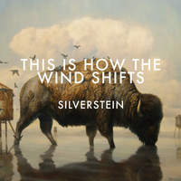 Párosan szép - Silverstein - This Is How/The Wind Shifts (2013)