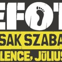 EFOTT 2012 - Velence