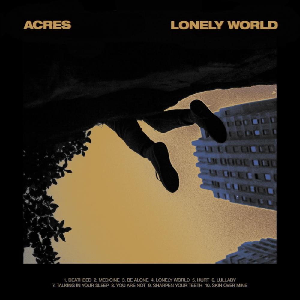 Érzelmi hullámvasút   Acres – Lonely World (2019)