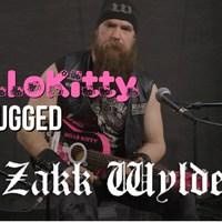Rózsaszín játékgitáron reszel Zakk Wylde