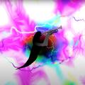 Rajongó készítette a Kodály Spicy Jazz új videóklipjét