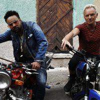 Megjelent Sting és Shaggy közös albuma