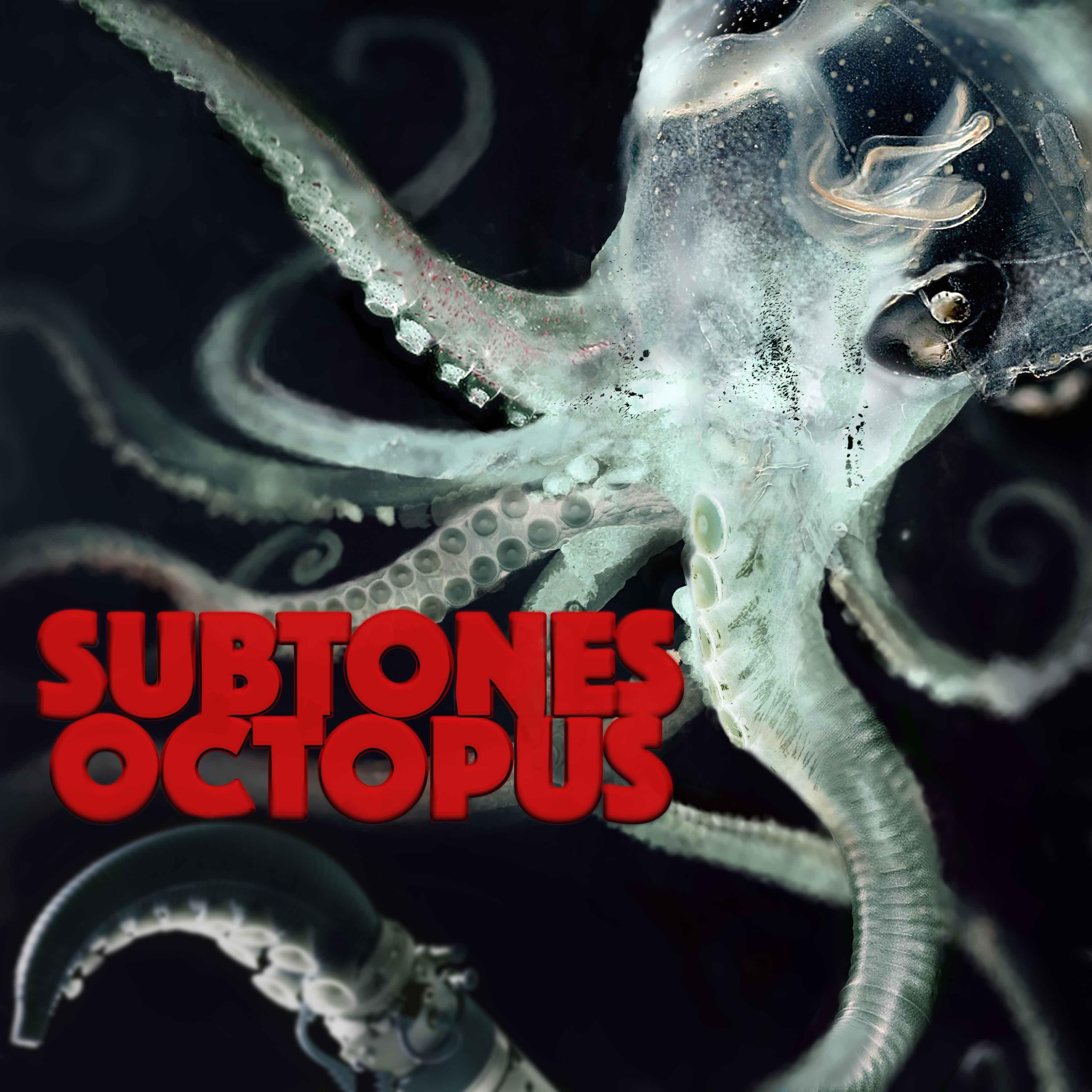 octopus_cover.jpg