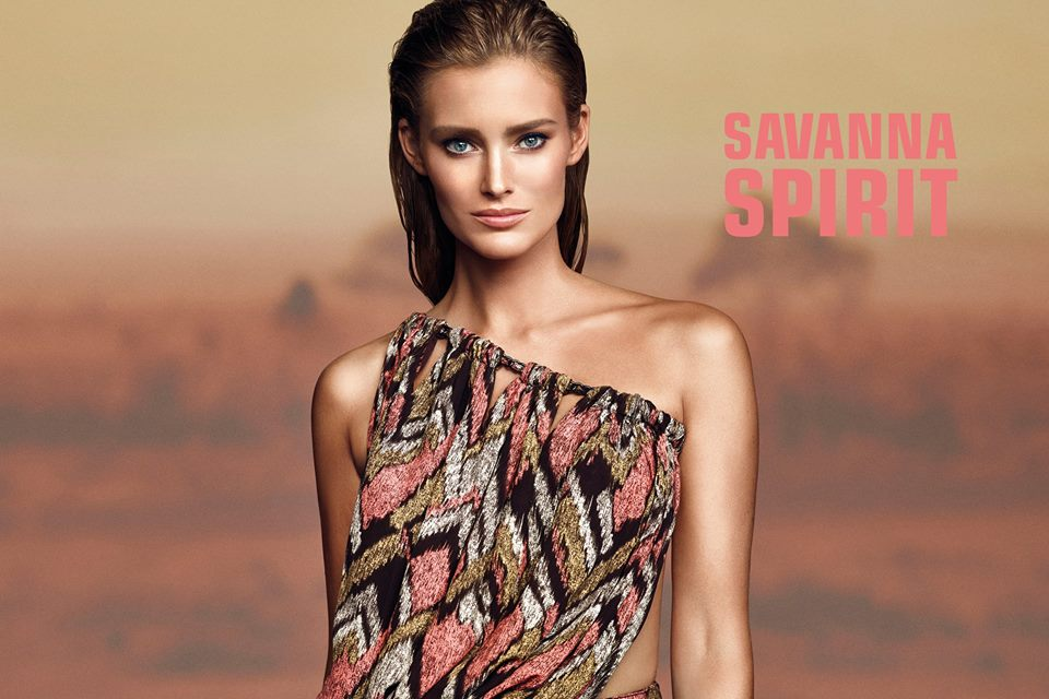 savanna_1.jpg