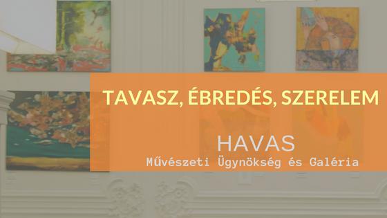 muveszeti_ugynokseg_es_galeria.png