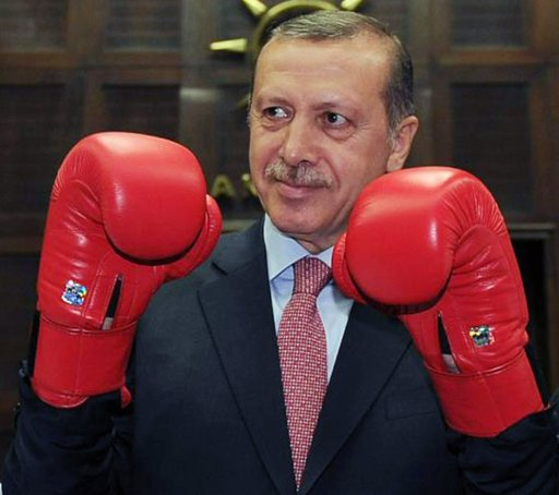 erdogan fighting.jpg