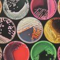 Mi van akkor, ha mégis antibiotikumot kell szedned?
