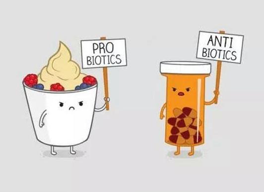 probiotics1.png