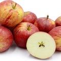 Szőlőízű almák