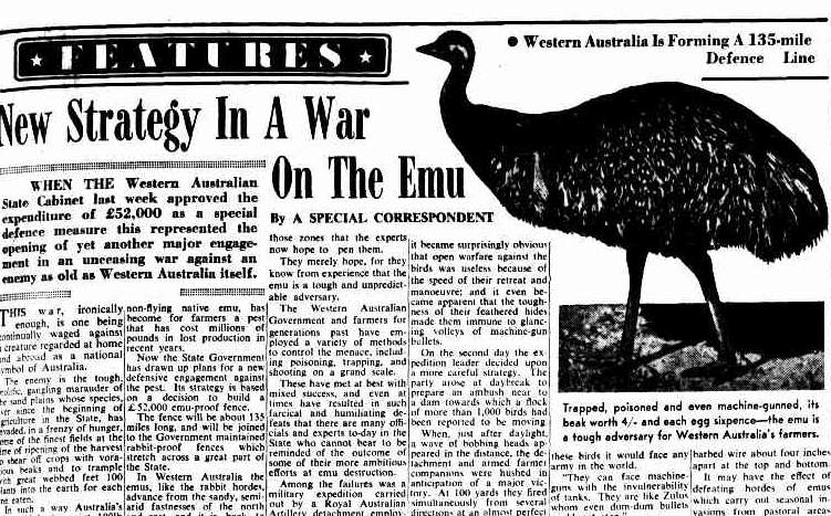 content-1492444700-emu-war.jpg