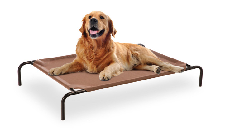 frisco-elevated-pet-beds.jpg