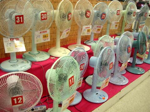 korean_fans.jpg