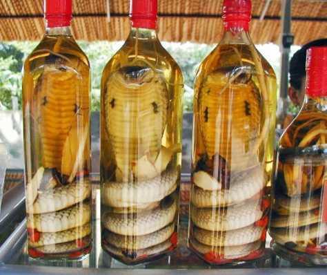 snake-wine3.jpg