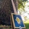 Készítsünk gitárt szivardobozból!