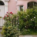 Egy angol ház újjászületése - 6. rész - Hová tűnnek a fák?