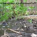 Öntözőrendszer újrahasznosított cuccokból (olvasói mutatvány)