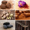 A 7 legjobb vágykeltő fűszeres recept