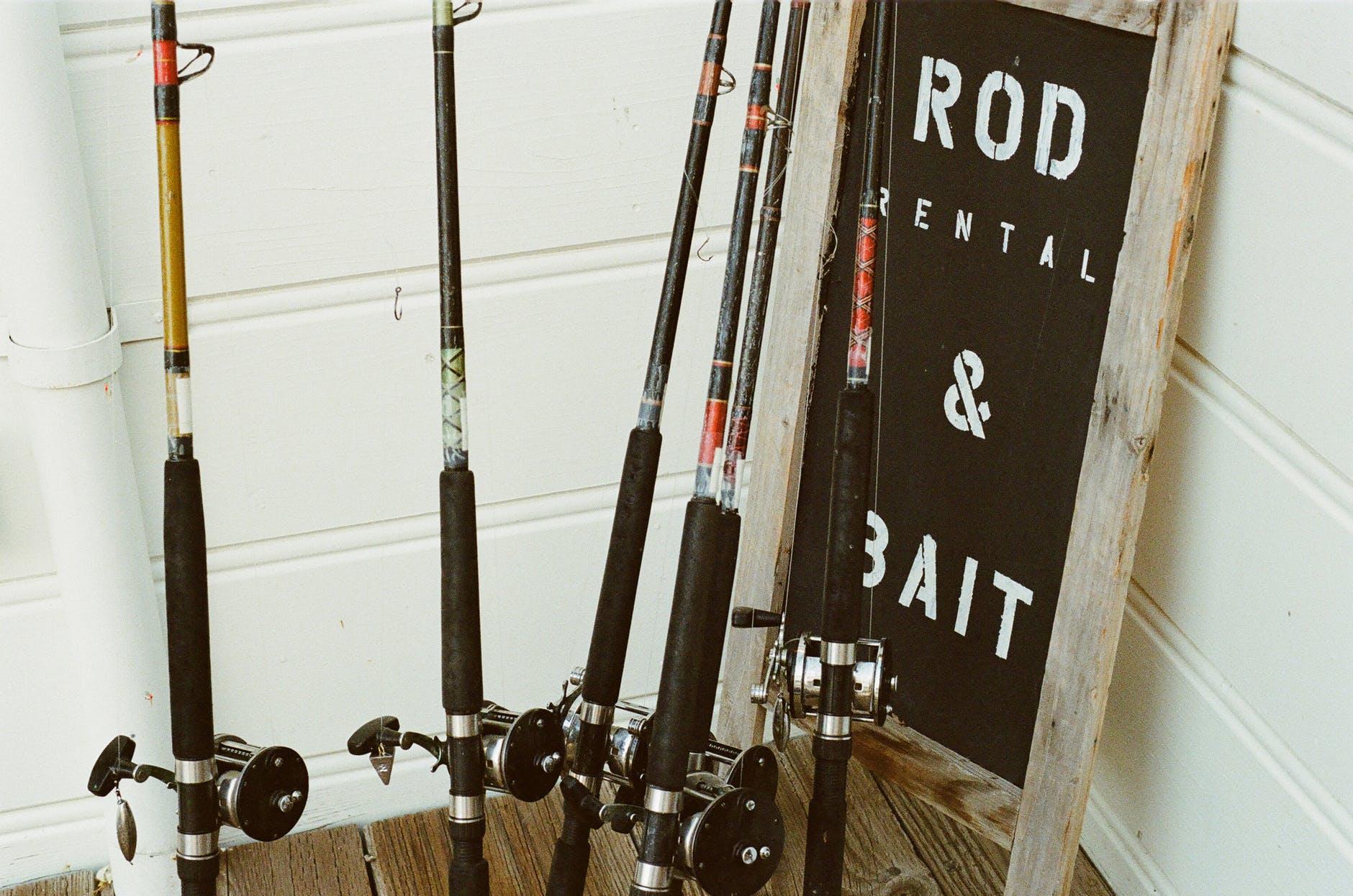 fishing-fishing-tackle-fisherman-bait.jpg