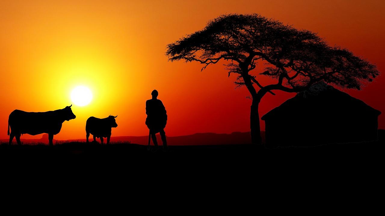 sunset-3747442_1280.jpg