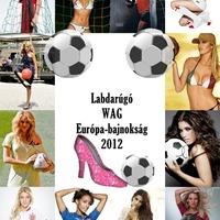 WAG EB 2012 - Szavazás indul!