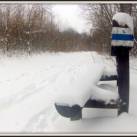 Márciusi tél