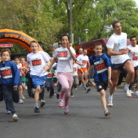 Elfogadták szerdán a fővárosi futóversenyeket szabályozó rendeletet
