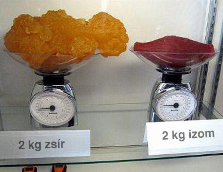 12 hetes herbalife súlycsökkentő rendszer