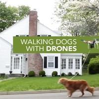 A drónom kutyája