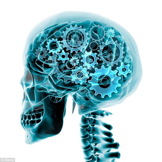 braincomputer.jpg