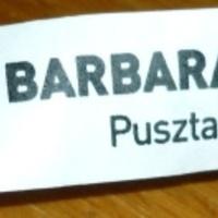 Idén 4x voltam az Aqua Barbarán, Pusztaszentlászlón!
