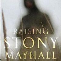 Stony Mayhall második élete - első kritika