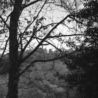 Kamerával a Mitágó-erdőben