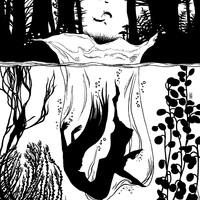 Ismerjétek meg az Ólomerdő illusztrátorát!