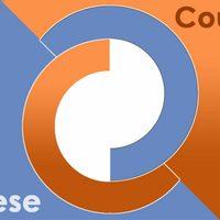 Chinese Coupons - Elindult kuponkereső oldalunk!