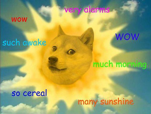 c628e198f6e481c3fb78c476c9943fba--funny-doge-doge-meme.jpg
