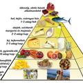 Egyél finomat egészségesen - 1.rész