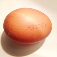 Gondolatok a tojásról