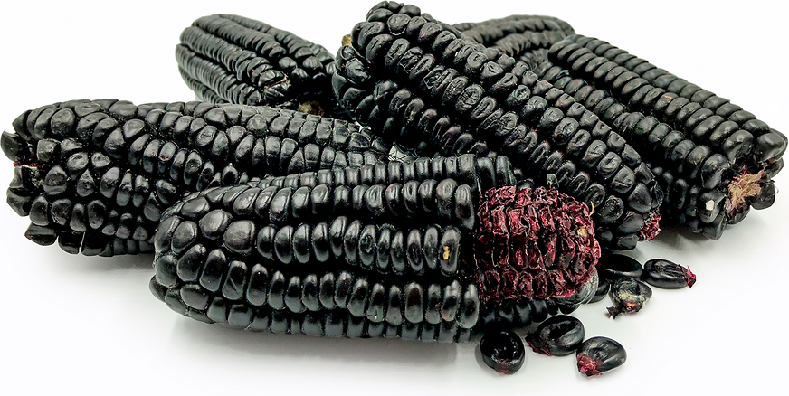 black-food-corn.png