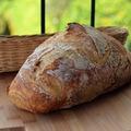 5 hasznos érdekesség a kenyérről