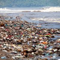 Műanyagiasodó emberiség, avagy a mikroműanyagok egészségügyi kockázatai