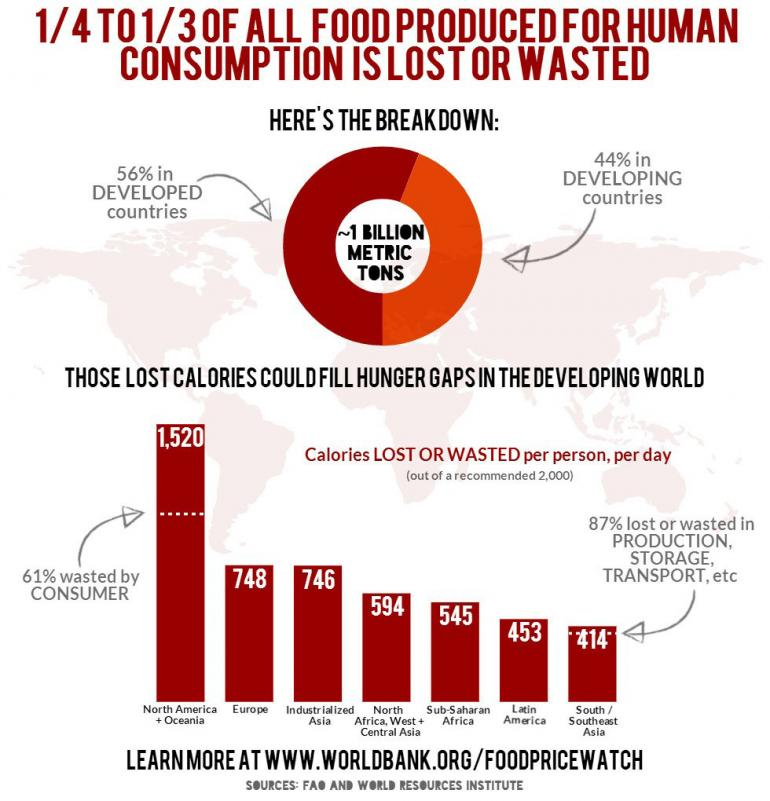 world-bank-food-infographic-2014-food-waste-statistics.jpg